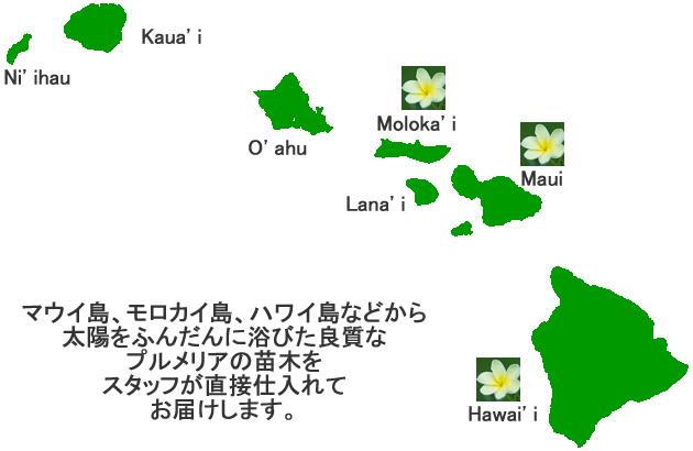 ハワイ各島のイメージ